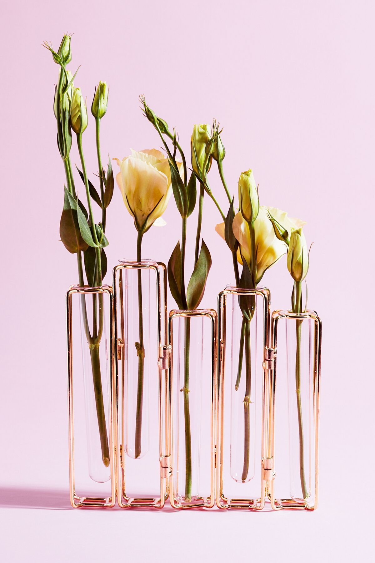 GLASS TEST TUBE VASE